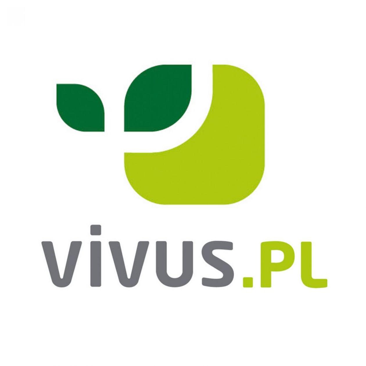 получить онлайн займ на vivus ru