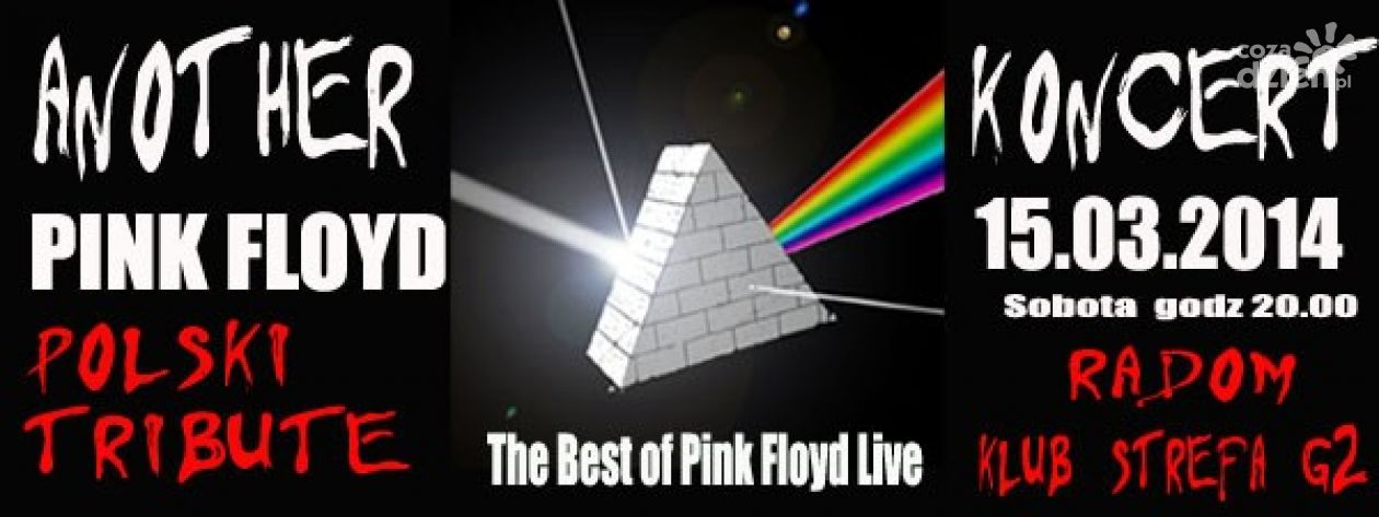 ANOTHER PINK FLOYD Polski Tribute