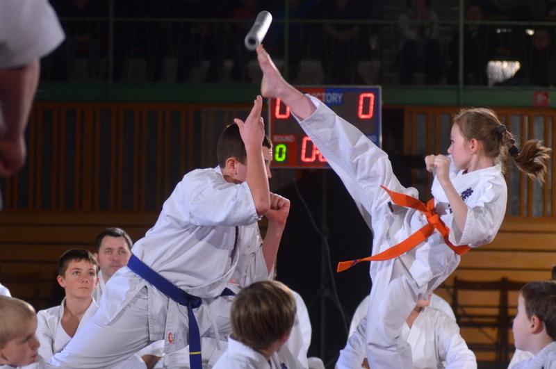 Pokazy Karate fot. S W